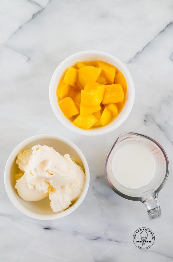 ingredients in a mango milkshake