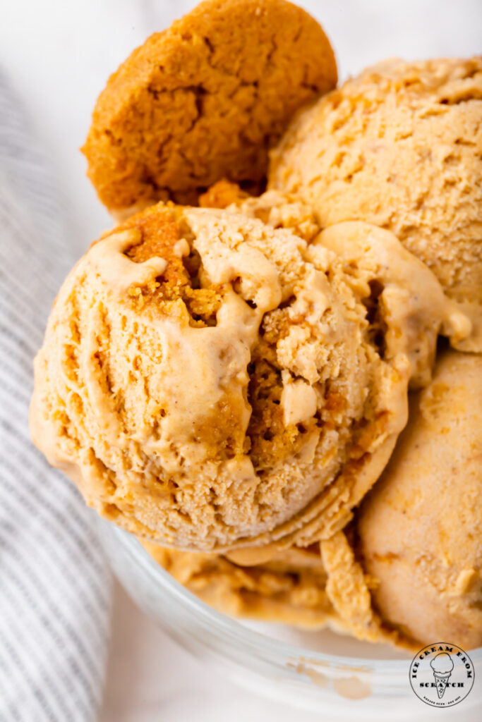 Closeup view of pumpkin pie ice cream in a dish, with a cookie on the side.
